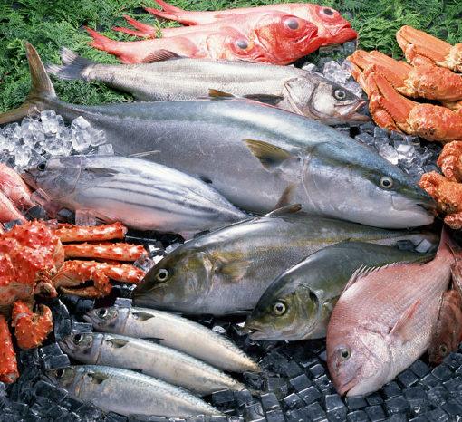 Самая полезная рыба для похудения
